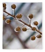 Frozen Seed Capsules In Time Fleece Blanket
