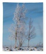 Frozen Views 1 Fleece Blanket