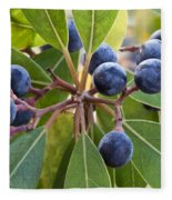Fruit And Leaves Of The Red Bay Fleece Blanket