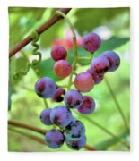 Fruit Of The Vine Fleece Blanket