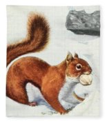 Fuertes, Louis Agassiz 1874-1927 - Burgess Animal Book For Children 1920 Red Squirrel Fleece Blanket