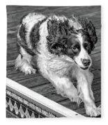 Full Tilt - English Springer Spaniel Bw Fleece Blanket