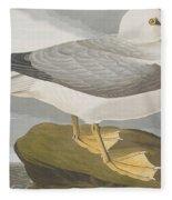 Fulmar Petrel Fleece Blanket