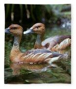Fulvous Whistling Duck Fleece Blanket