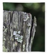 Fungi Green Fleece Blanket