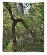 Funky Tree On Trail In Peters Canyon Fleece Blanket