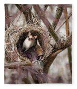 Funny Little Bird Fleece Blanket