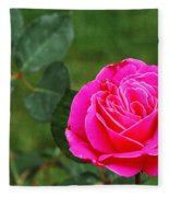 Fuschia Rose Fleece Blanket