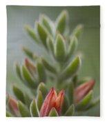 Fuzzy Orange Succulent Blossom Fleece Blanket