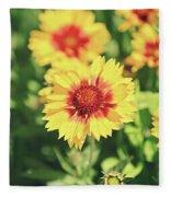 Gaillardia Flowers Fleece Blanket