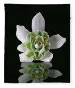 Galanthus Nivalis Flore Pleno Fleece Blanket