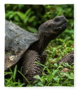 Galapagos Giant Tortoise In Profile In Woods Fleece Blanket