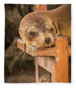 Galapagos Sea Lion Sleeping On Wooden Bench Fleece Blanket