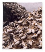 Gannet Cliffs Fleece Blanket