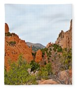 Garden Of The Gods Study 6 Fleece Blanket