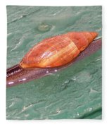 Garden Snail 4 Fleece Blanket