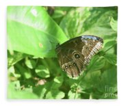 Garden With A Blue Morpho Butterfly With Wings Closed Fleece Blanket
