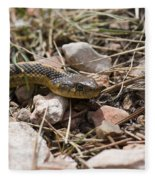 Garter Snake On The Trail In The Pike National Forest Of Colorad Fleece Blanket