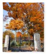 Gate And Driveway 3 Fleece Blanket