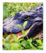 Gator 1 Fleece Blanket