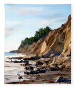 Gaviota Fleece Blanket
