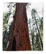 General Sherman Tree Portrait Fleece Blanket