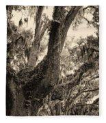 Georgia Live Oaks And Spanish Moss In Sepia Fleece Blanket