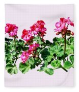 Geraniums In A Row Fleece Blanket