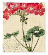 Geraniums Fleece Blanket