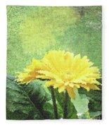 Gerber Daisy And Reflection Fleece Blanket