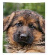 German Shepherd Puppy II Fleece Blanket