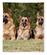 German Shepherds - Family Portrait Fleece Blanket