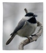 Getting Ready To Crack - Black-capped Chickadee Fleece Blanket