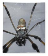 Getting To Know A Golden Orb Weaver Fleece Blanket