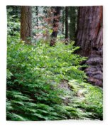 Giant Among The Forest Fleece Blanket