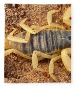 Giant Hairy Scorpion Fleece Blanket