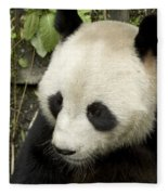 Giant Panda At Rest Fleece Blanket