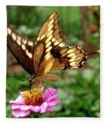 Giant Swallowtail Butterfly Fleece Blanket