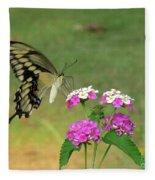 Giant Swallowtail Butterfly II Fleece Blanket