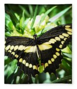 Giant Swallowtail Fleece Blanket