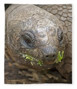 Giant Tortoise Fleece Blanket