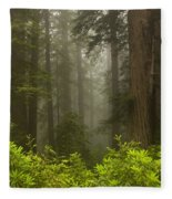 Giants In The Mist Fleece Blanket