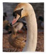Ginger Swan Fleece Blanket