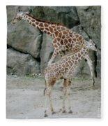 Giraffe And Baby  Fleece Blanket
