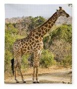 Giraffe Grazing Fleece Blanket