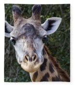Giraffe Looking At You Fleece Blanket