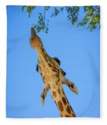 Giraffe Lunch Fleece Blanket