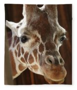 Giraffe Taking A Peek Fleece Blanket