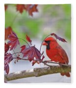 Give Me Shelter - Male Cardinal Fleece Blanket