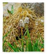 Glacial Wildflowers Fleece Blanket